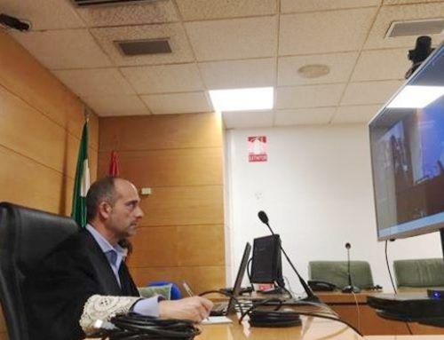 Solo ante el pleito, Granada acoge el primer juicio telemático de España